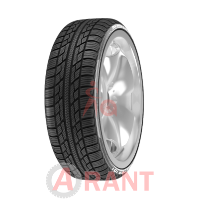 Шина Achilles Winter 101X 195/60 R16 89H